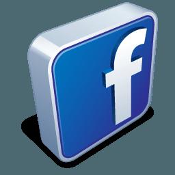 Facebook Fans Social Stats
