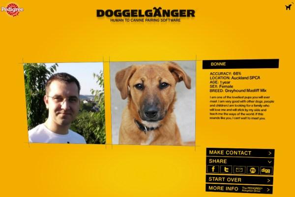 Doppelgänger Fun Hund Tiere