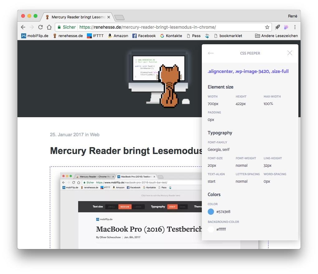 Chrome CSS Style Web