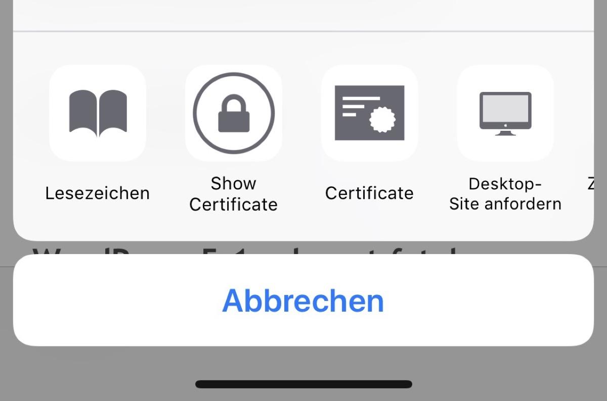 Apple Browser iOS ssl